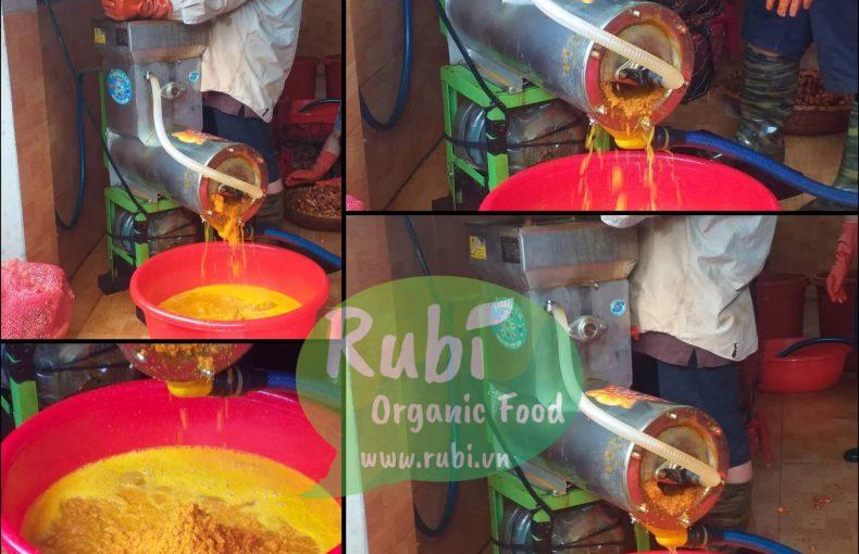 Sản xuất Tinh Bột Nghệ cơ sở chế biến Rubi Organic